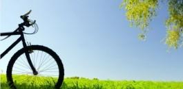 """Biciclettata """"Natura e gusto"""""""