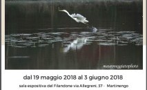 Mostra fotografica di Mauro Veggiato al Filandone