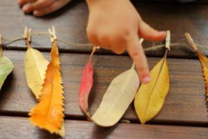"""Laboratorio per bambini """"Bosco, alberi, foglie"""" @ Biblioteca di Martinengo"""